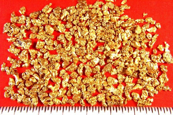 Win Free Gold Gold Nuggets For Sale Buy Gold Nuggets