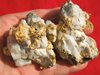 Museum Grade 14.21 Ounce Gold in Quartz Specimen from California