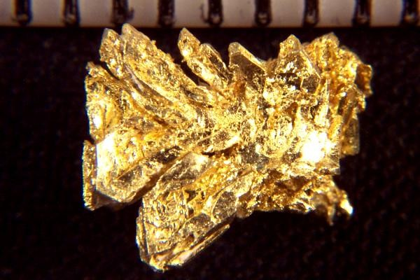 Elongated Gold Crystals From Round Mountain 0 00 Gold
